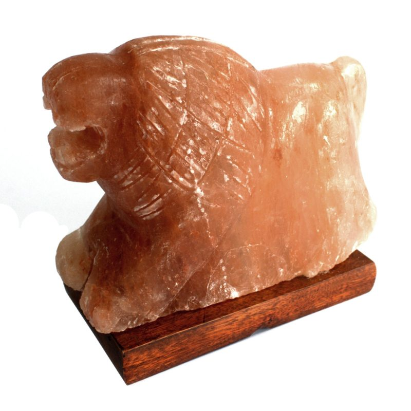 Animal salt Lamp - Lion 3-4kg