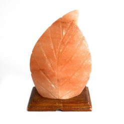 Fern Shaped Salt Lamp