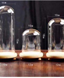 Glass Cover Vase Product