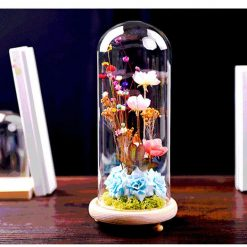 Glass Cover Vase Main